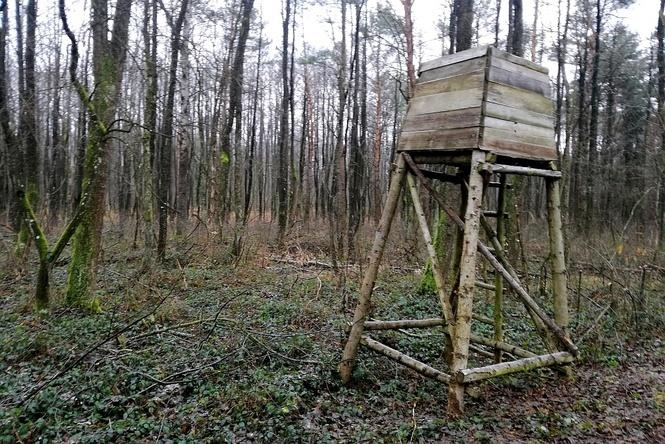 """Teraz Puławy: Koło Łowieckie """"Sokół"""" zapewnia, że obiekty znajdują się za granicą rezerwatu Piskory,…"""