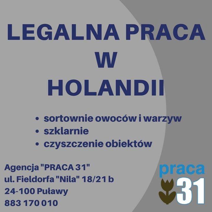 Justyna Praca shared Praca31 Holandia's post to the group: Puławy