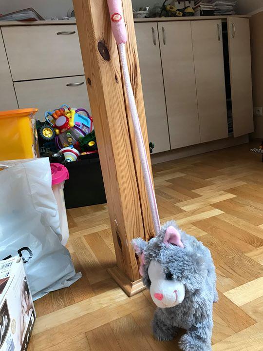 Kotek 35zł – Kurów- Puławy Sprzedam zabawkę kotka po wciśnięciu raczki kotek gra melodyjkę…