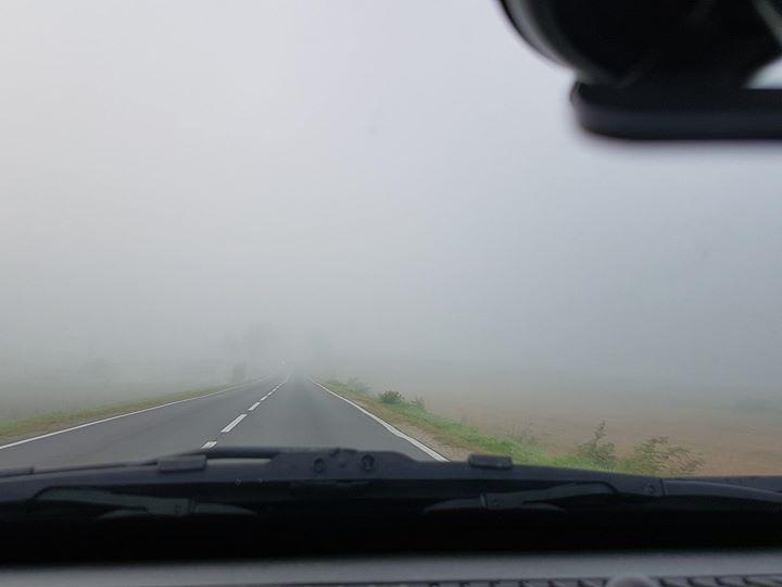 O poranku na drogach występują gęste mgły. Zachowajcie ostrożność. Foto: Puławy 112
