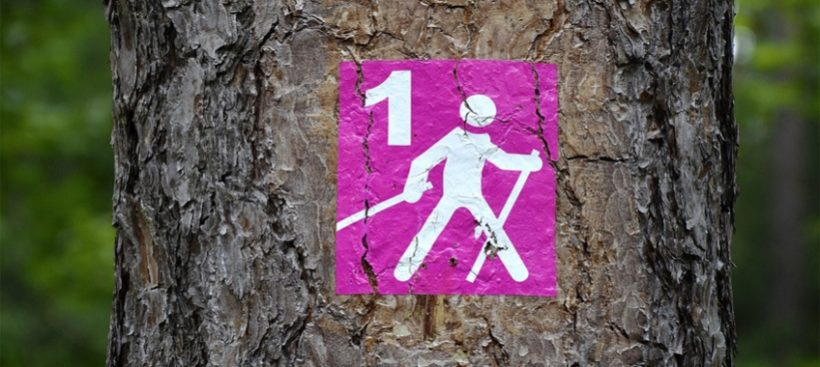 Centrum Informacji Turystycznej zachęca do spacerów z kijami Nordic Walking, które można wypożyczyć na…