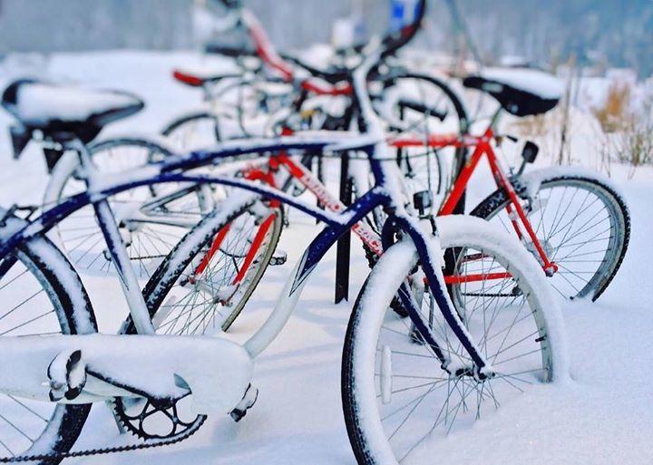 Dzisiaj obchodzimy Międzynarodowy dzień zimowej jazdy rowerem do pracy!️ Kto z Was wybiera ten…