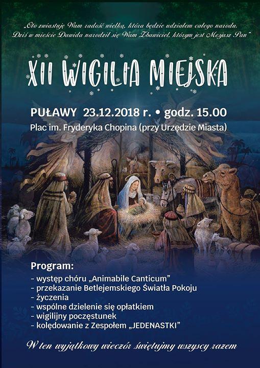 ️W imieniu Przewodniczącej Rady Miasta Puławy oraz Prezydenta Miasta Puławy zapraszamy wszystkich mieszkańców 23…